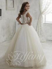 13457 Champagne/White back