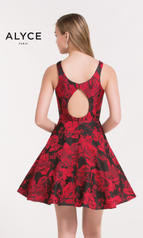 3711 Red Print back