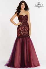 6752 Black Plum/Burgundy front
