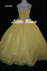 LR2188 Yellow back