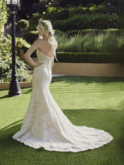 2244 Champagne/Ivory/Silver back