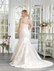 2257 Champagne/Ivory/Silver back