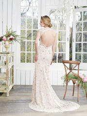 2258 Champagne/Ivory/Silver back