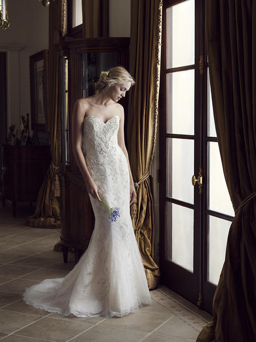Carnation - Casablanca Bridal
