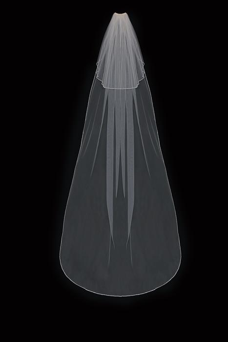 Cathedral with Blusher Bridal Veil
