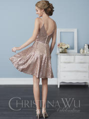 22761 Rose Gold back