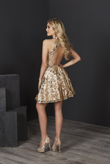27217 Gold/Nude back