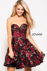 55633 Jovani Homecoming Dresses