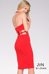 JVN37497 Red back