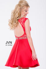 JVN41672 Red back