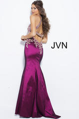 JVN41685 Cranberry back