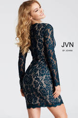 JVN42635 Peacock back