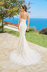 H1661 Ivory/Champagne back