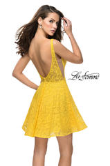 26616 Yellow back