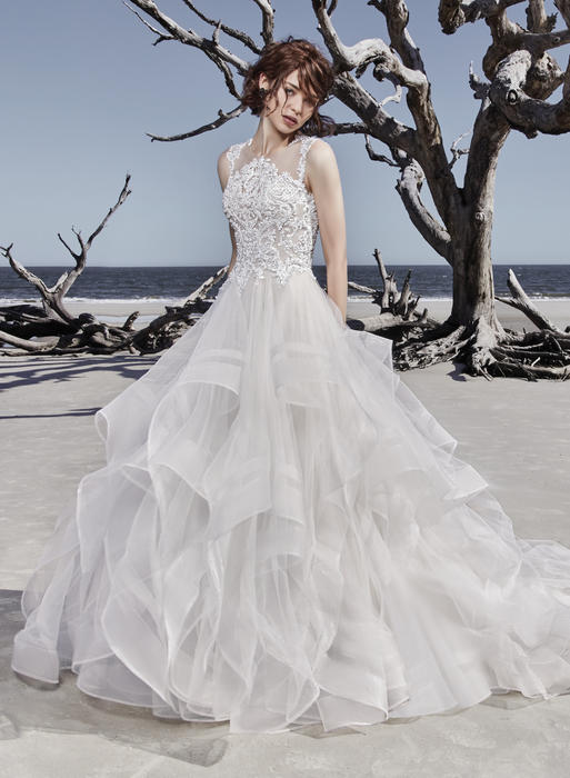 Sottero and Midgley-Ariya