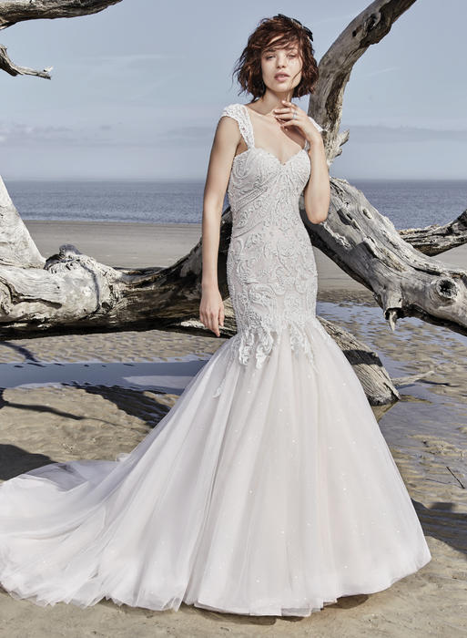 Sottero and Midgley-Brette