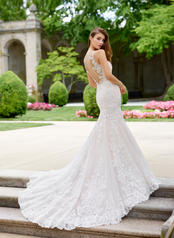 118275 Ivory/Tea Rose back