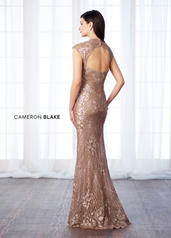 217632 Dark Champagne back