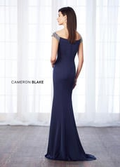 217633 Navy Blue back