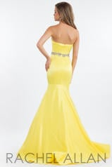 2123 Yellow back