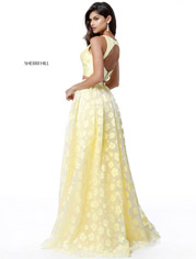 51626 Yellow back