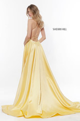 52095 Yellow back