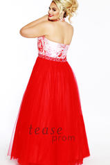 TE1843 Red/Floral back
