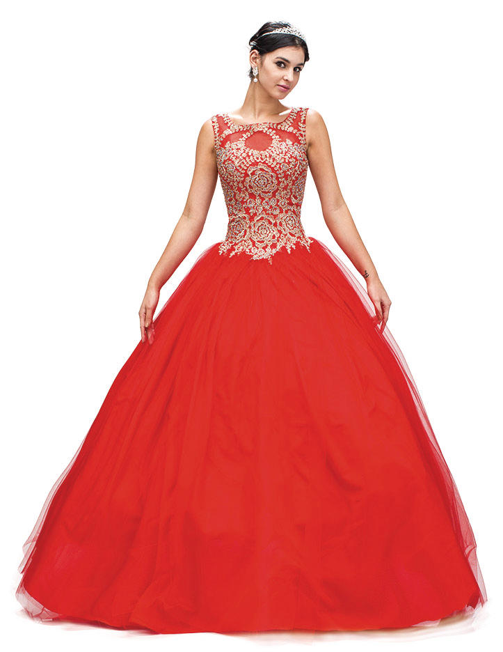 Dancing Queen - Embroidered Tulle Ball Gown 1101