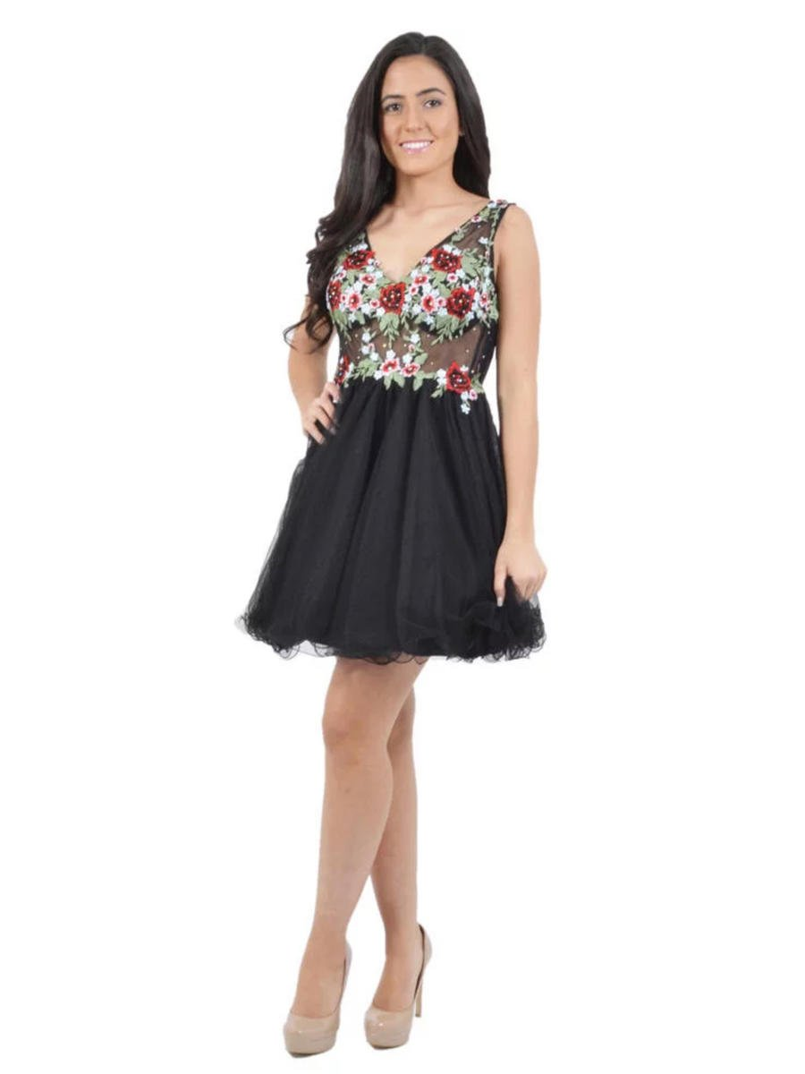 BLONDIE NITE - Floral Embroidered Tulle Fit & Flare Dress