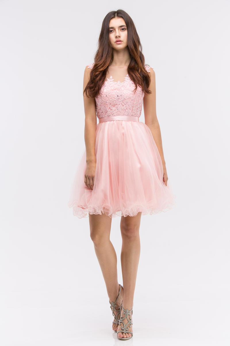 Fashion Eureka - Lace & Tulle Fit & Flare Dress