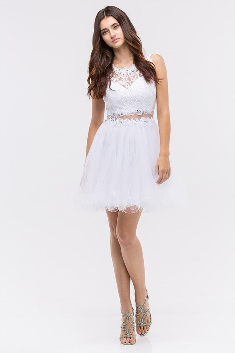 Fashion Eureka - Short Lace & Tulle Fit & Flare Illusion Dress