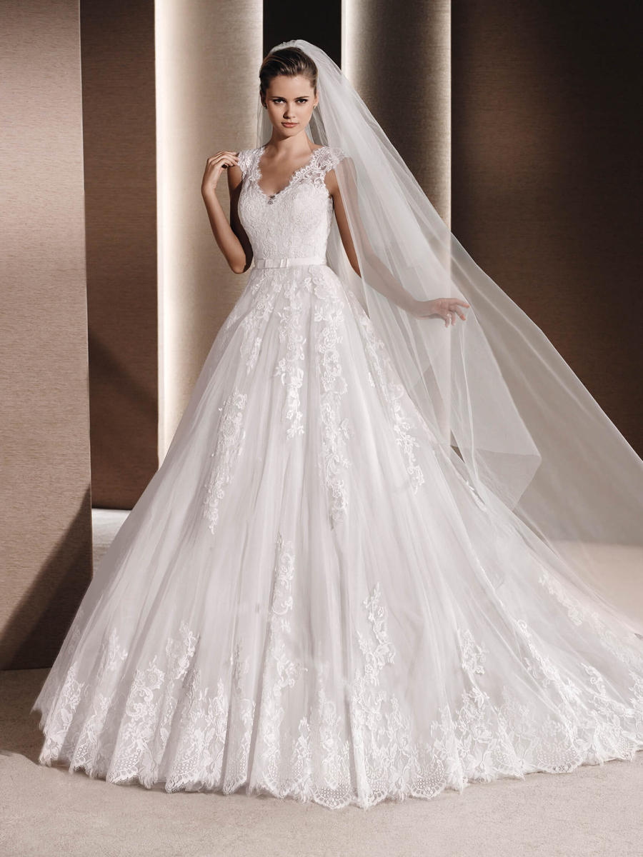 Pronovias - Embroidered Lace & Tulle Ball Gown