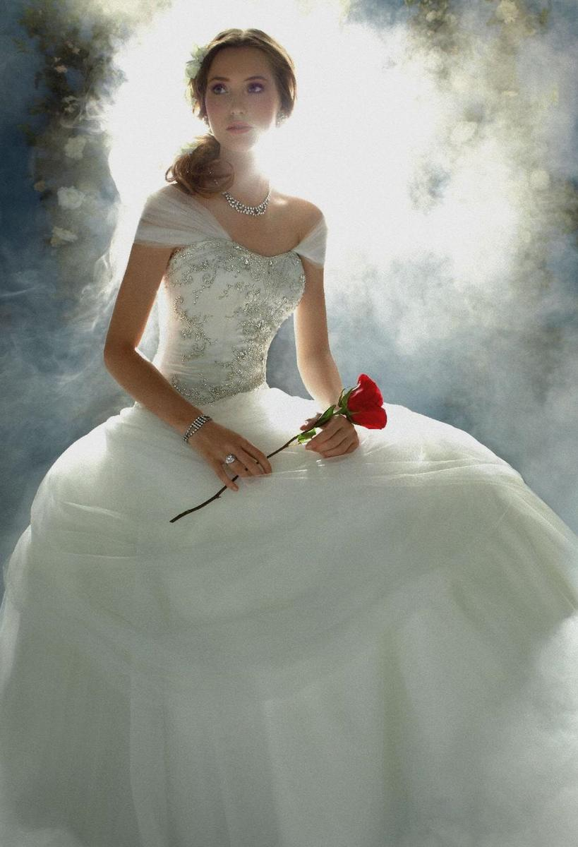 Disney Belle Wedding Gown